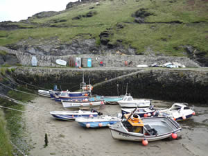 Boscastle with a harbour of sailing boats